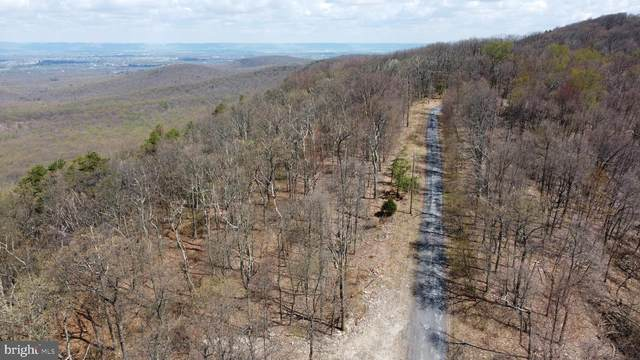 North Tract Tower Road, DILLSBURG, PA 17019 (#PACB134050) :: The Heather Neidlinger Team With Berkshire Hathaway HomeServices Homesale Realty