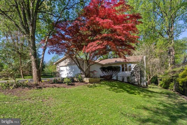 1508 Forest Lane, MCLEAN, VA 22101 (#VAFX1194958) :: ExecuHome Realty