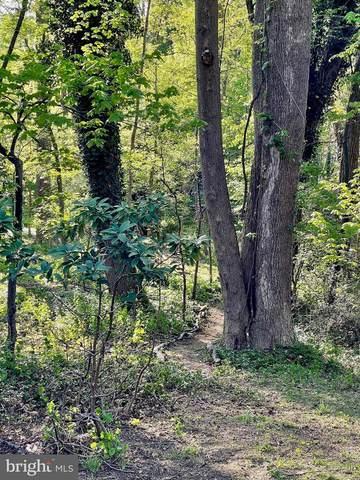 1508 Forest Lane, MCLEAN, VA 22101 (#VAFX1194972) :: The Vashist Group