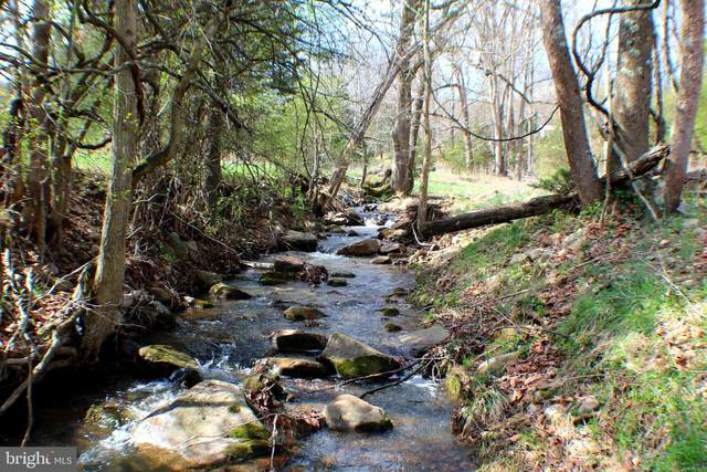 4606 South Mill Creek Road, UPPER TRACT, WV 26866 (#WVPT101740) :: AJ Team Realty