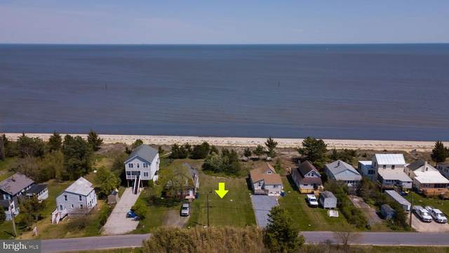 105 S Bay Drive, DOVER, DE 19901 (MLS #DEKT248124) :: Kiliszek Real Estate Experts