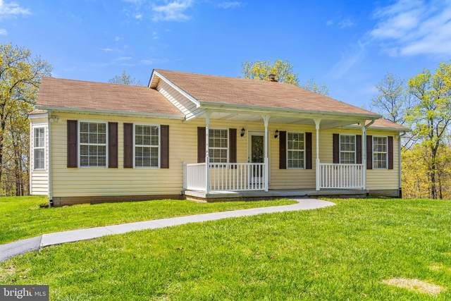 4048 N Frederick Pike, WINCHESTER, VA 22603 (#VAFV163586) :: ExecuHome Realty