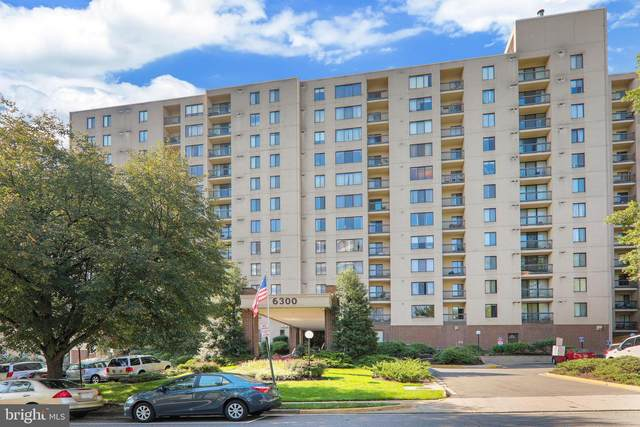 6300 Stevenson Avenue #411, ALEXANDRIA, VA 22304 (#VAAX258716) :: Dart Homes