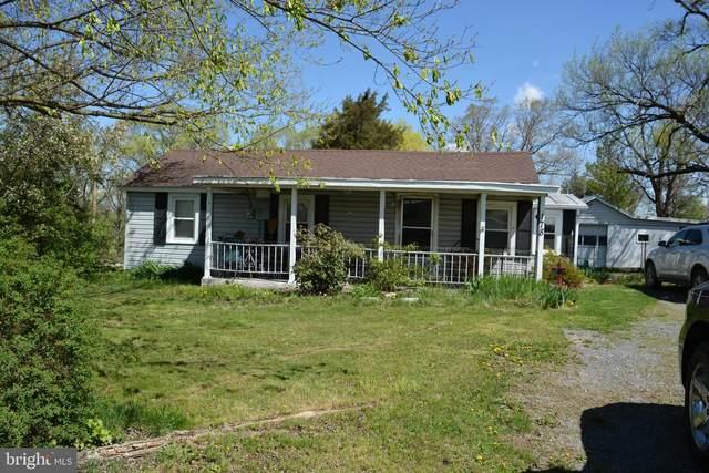 178 Gainesboro Road, WINCHESTER, VA 22603 (#VAFV163588) :: Advon Group