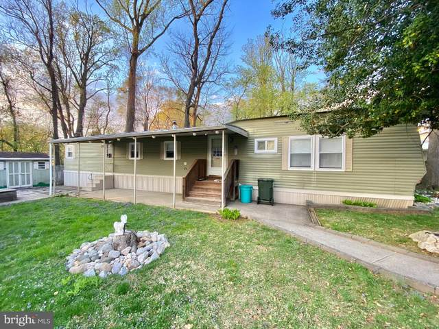 2304 Brownsville Road F8, FEASTERVILLE TREVOSE, PA 19053 (#PABU525306) :: REMAX Horizons