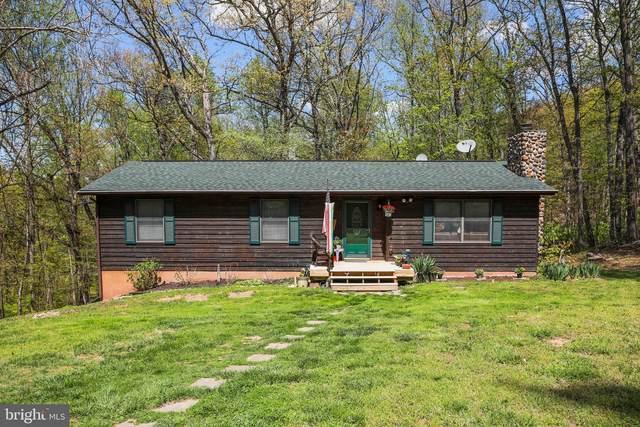 1880 Blue Mountain Road, FRONT ROYAL, VA 22630 (#VAWR143392) :: Gail Nyman Group