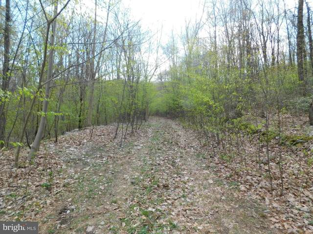 0 Powder Mill Hollow Road, BOYERTOWN, PA 19512 (#PABK376374) :: ExecuHome Realty