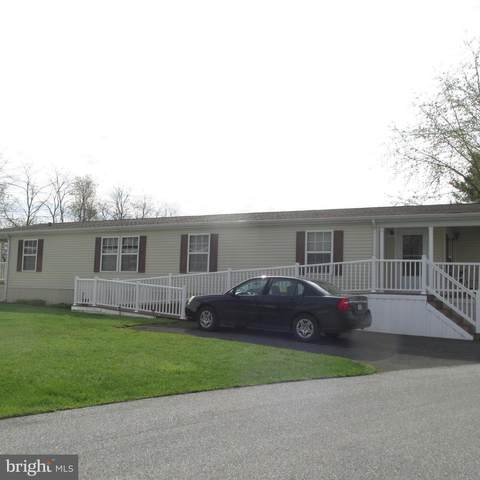 38 Ruth Drive, GORDONVILLE, PA 17529 (#PALA180992) :: REMAX Horizons