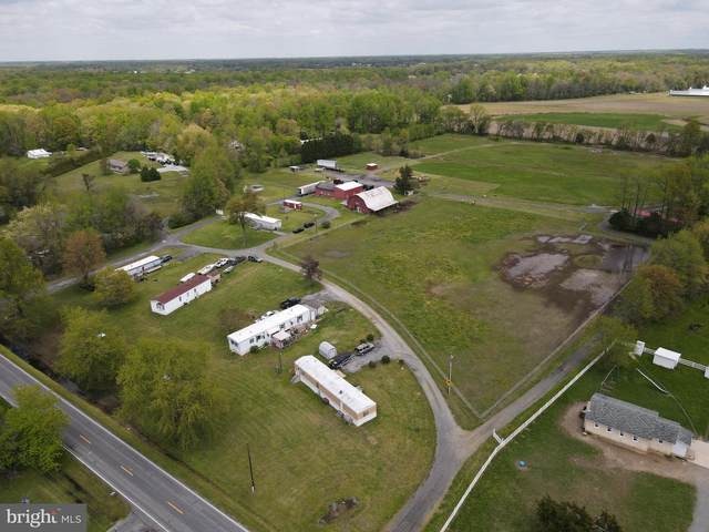84 Spotted Acres Farm Lane, DOVER, DE 19904 (MLS #DEKT248174) :: Kiliszek Real Estate Experts
