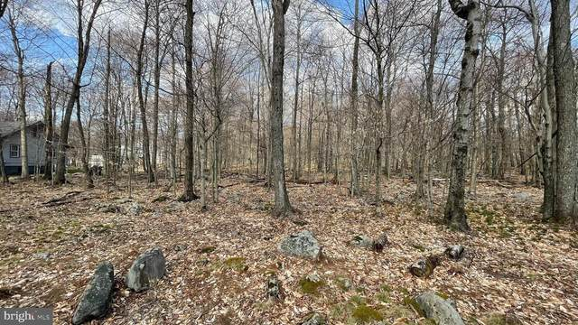Lot 27 Oneida Drive, GOULDSBORO, PA 18424 (#PAWN100294) :: ROSS | RESIDENTIAL