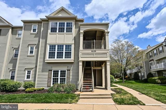 9259 Cardinal Forest Lane #201, LORTON, VA 22079 (#VAFX1195874) :: Certificate Homes