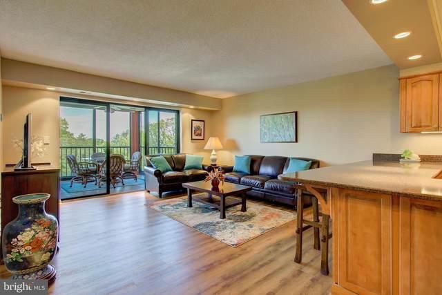 5901 Mount Eagle Drive #717, ALEXANDRIA, VA 22303 (#VAFX1195886) :: Dart Homes