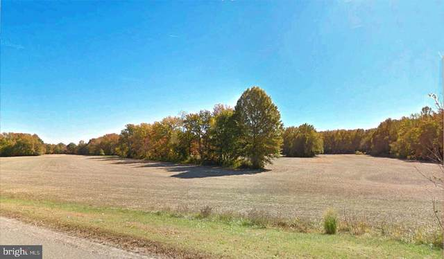 367-369 Route 40, CARNEYS POINT, NJ 08069 (MLS #NJSA141686) :: The Dekanski Home Selling Team