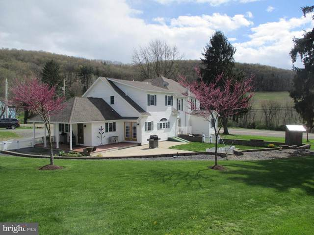 328 Century Road, DANVILLE, PA 17821 (#PAMN100040) :: ExecuHome Realty