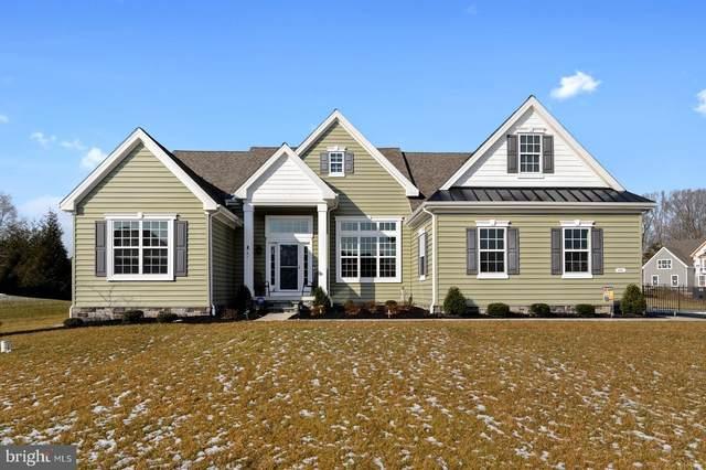 341 Peach Peddler Path, DOVER, DE 19901 (MLS #DEKT248250) :: Kiliszek Real Estate Experts