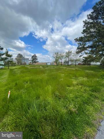 Lot 1 N Bay Drive, DOVER, DE 19901 (MLS #DEKT248264) :: Kiliszek Real Estate Experts