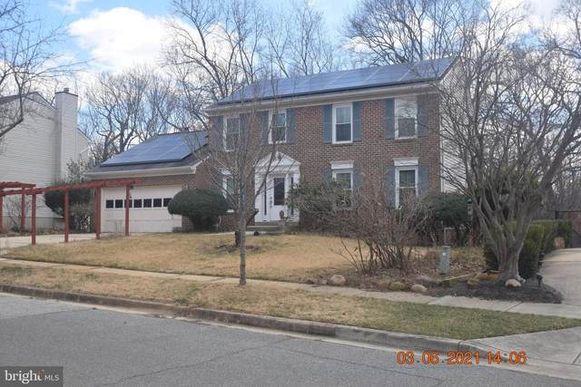 614 Bay Front Drive, FORT WASHINGTON, MD 20744 (#MDPG604376) :: The Riffle Group of Keller Williams Select Realtors