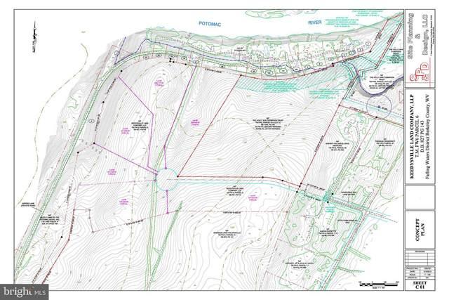 2161 Grade Road, FALLING WATERS, WV 25419 (#WVBE185532) :: LoCoMusings
