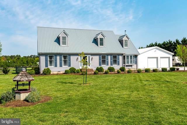 5410 Marlan Drive, TRAPPE, MD 21673 (MLS #MDTA140988) :: Maryland Shore Living | Benson & Mangold Real Estate