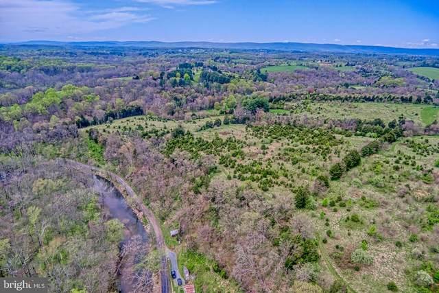 Hidden Lane Farm, LOVETTSVILLE, VA 20180 (#VALO436818) :: Peter Knapp Realty Group