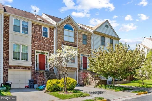 46733 Woodmint Terrace, STERLING, VA 20164 (#VALO436848) :: Dart Homes