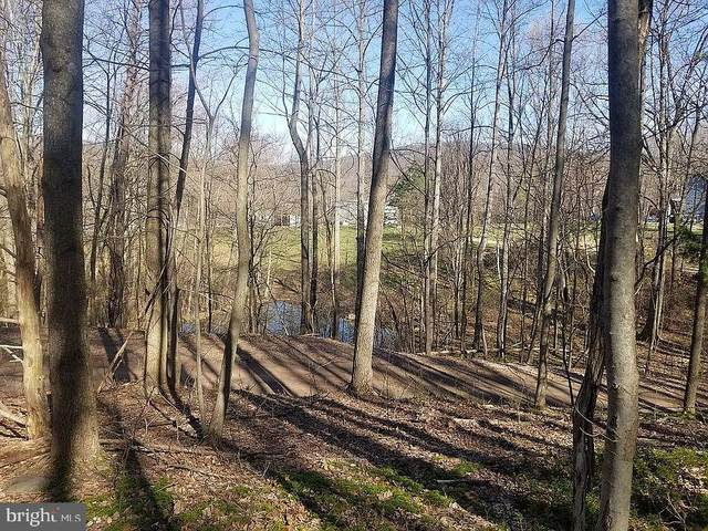 Chance Lane, PAW PAW, WV 25434 (#WVHS115596) :: Bowers Realty Group
