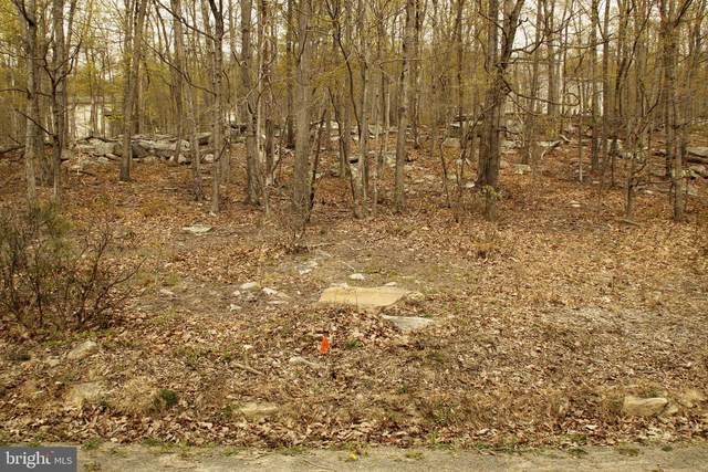 406 Elk Trail, WINCHESTER, VA 22602 (#VAFV163738) :: LoCoMusings