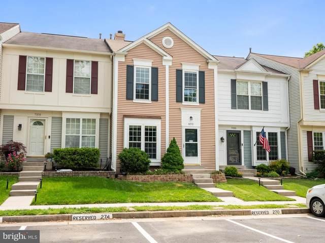 7253 Stover Drive, ALEXANDRIA, VA 22306 (#VAFX1196602) :: Dart Homes