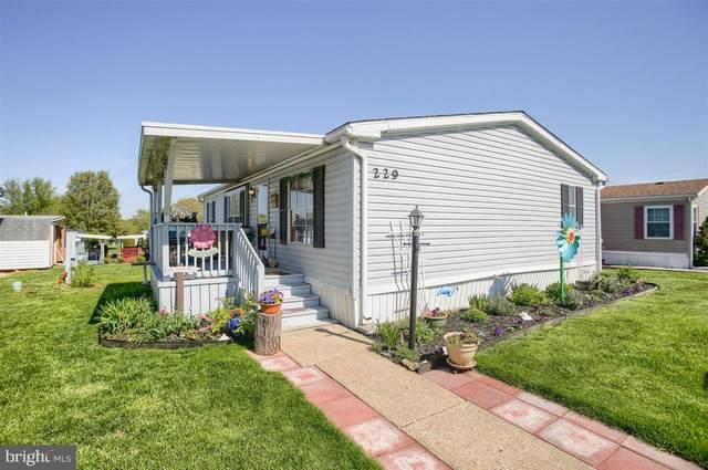 229 Greyfield Drive, LANCASTER, PA 17603 (#PALA181238) :: Flinchbaugh & Associates