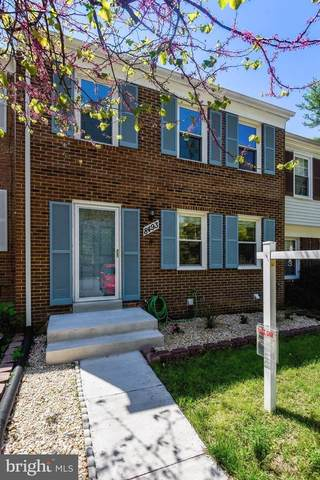 8493 Kitchener Drive, SPRINGFIELD, VA 22153 (#VAFX1196882) :: Advon Group