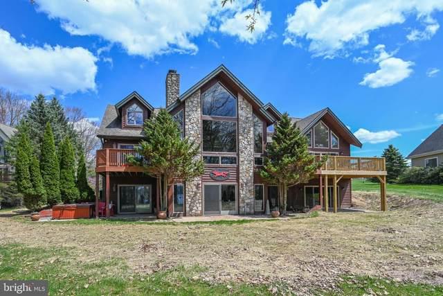 298 Moonrise Drive, SWANTON, MD 21561 (#MDGA135036) :: The Riffle Group of Keller Williams Select Realtors