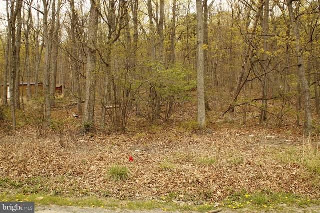 543 Bluebird Trail, WINCHESTER, VA 22602 (#VAFV163770) :: LoCoMusings