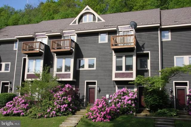 6 Winding 19C, MC HENRY, MD 21541 (#MDGA135042) :: Colgan Real Estate