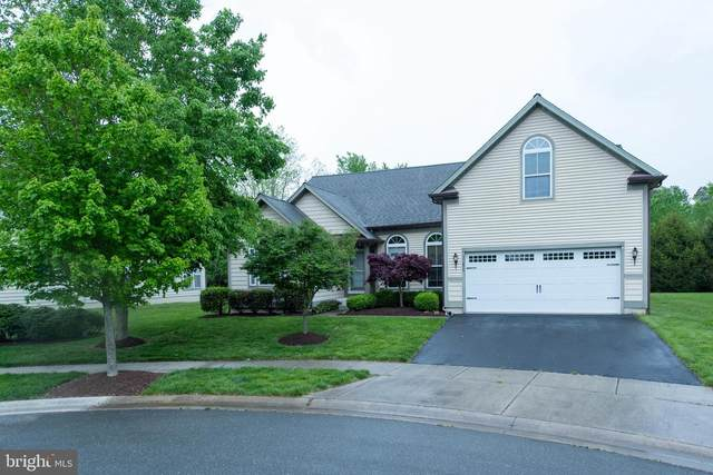 31825 Skimmer Road, OCEAN VIEW, DE 19970 (#DESU182006) :: The Allison Stine Team