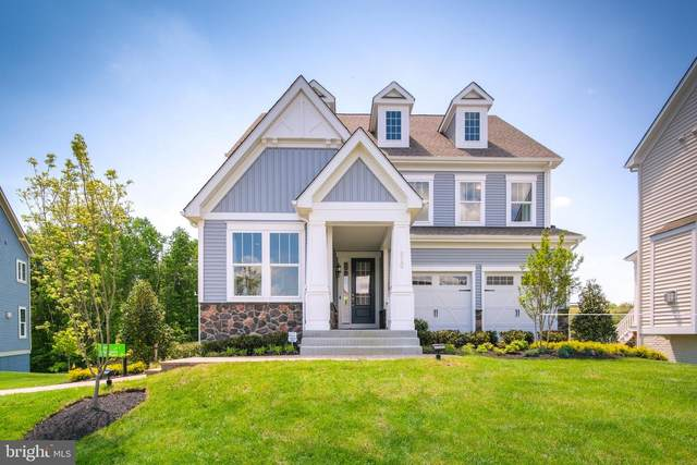 157 Hibiscus Drive, STAFFORD, VA 22554 (#VAST231816) :: The Riffle Group of Keller Williams Select Realtors