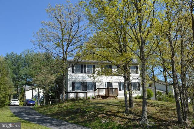 118 Lakewood Drive, STEPHENS CITY, VA 22655 (#VAFV163778) :: Great Falls Great Homes