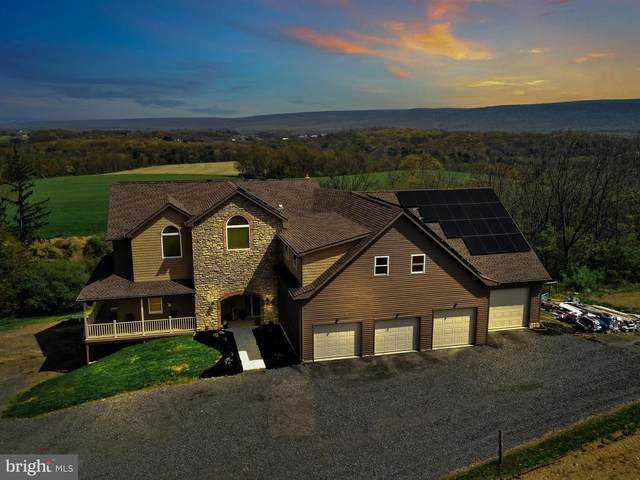 53 Fiddlers Road, PINE GROVE, PA 17963 (#PASK135132) :: Ramus Realty Group
