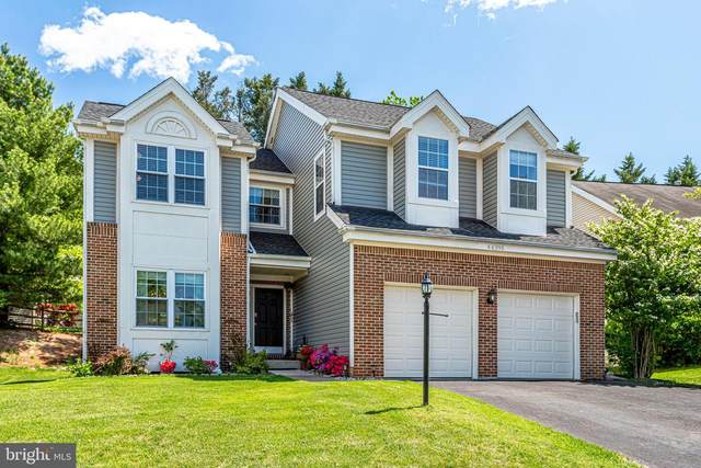 46395 Newfield Place, STERLING, VA 20165 (#VALO437120) :: Dart Homes