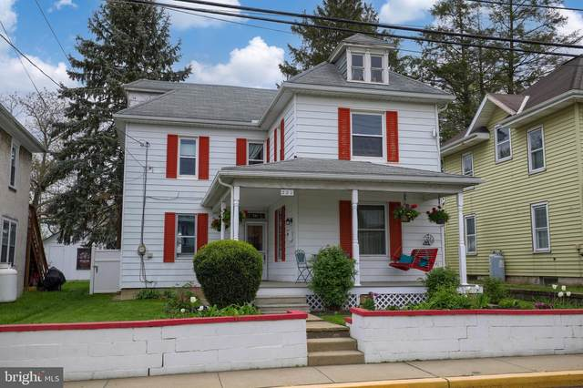 221 Brimmer Avenue, NEW HOLLAND, PA 17557 (#PALA181378) :: Realty ONE Group Unlimited