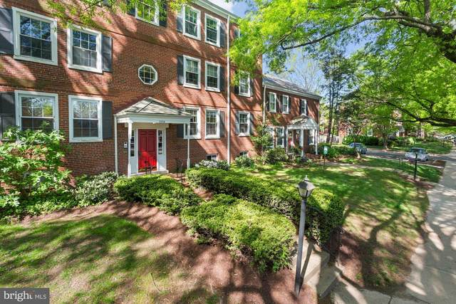 2994 S Columbus Street A2, ARLINGTON, VA 22206 (#VAAX259090) :: Bruce & Tanya and Associates