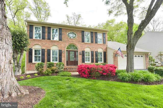 6416 Springhouse Circle, CLIFTON, VA 20124 (#VAFX1197384) :: Dart Homes