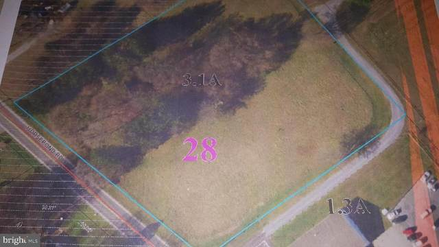 0 Horsepond Road, DOVER, DE 19901 (#DEKT248422) :: CoastLine Realty