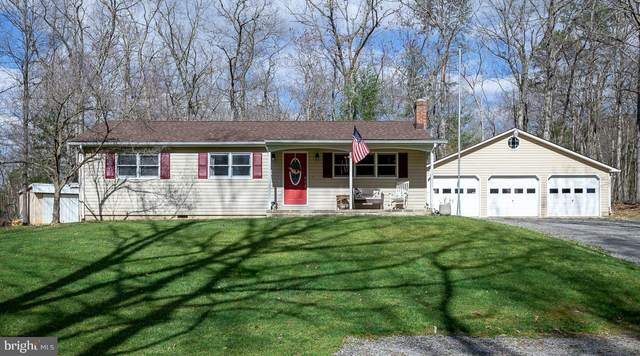 20243 Simmons Gap Road, ELKTON, VA 22827 (#VARO101574) :: John Lesniewski | RE/MAX United Real Estate