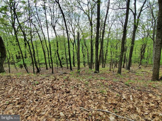 LOT 56 -3.74 ACRES Falconwood Road, PAW PAW, WV 25434 (#WVHS115606) :: CENTURY 21 Core Partners