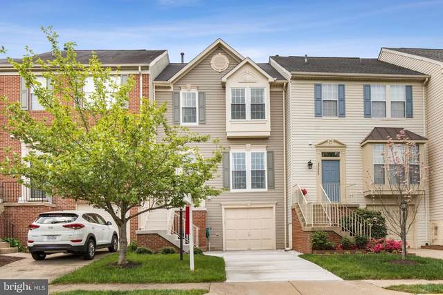 20355 Briarcliff Terrace, STERLING, VA 20165 (#VALO437198) :: Dart Homes
