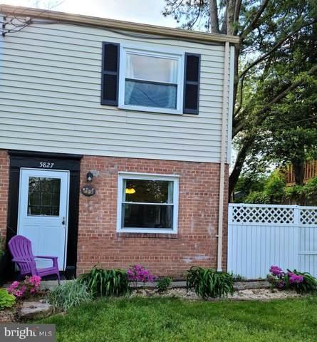 5827 Blaine Drive, ALEXANDRIA, VA 22303 (#VAFX1197690) :: Dart Homes