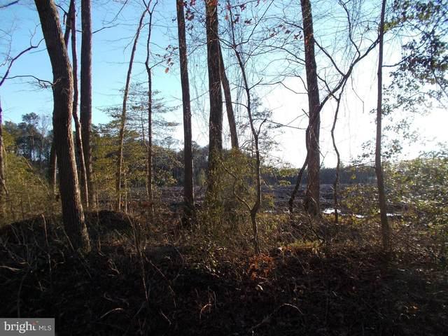 Springdale Road, EAST NEW MARKET, MD 21631 (#MDDO127338) :: Dawn Wolf Team