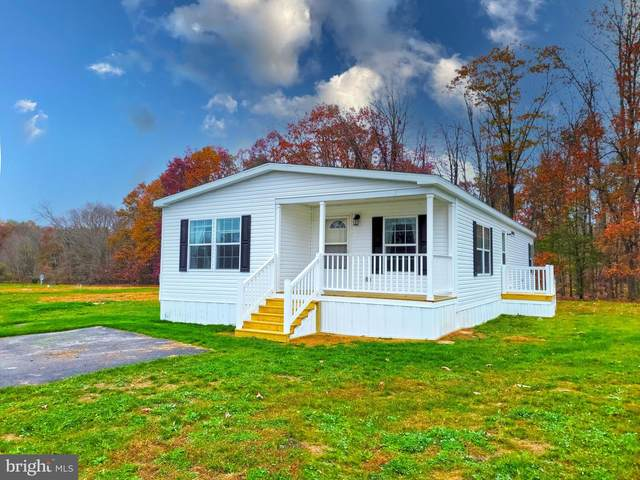 35 Meadowview Drive, NEW BLOOMFIELD, PA 17068 (#PAPY103398) :: Realty ONE Group Unlimited