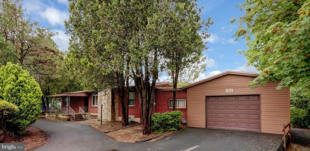 801 Valley Street, ENOLA, PA 17025 (#PACB134500) :: The Joy Daniels Real Estate Group