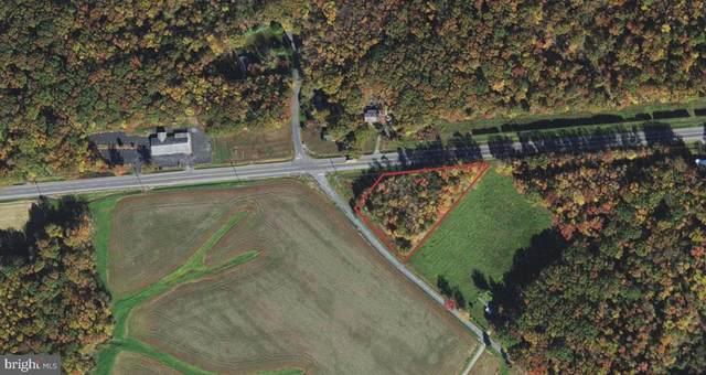 Shadingreach, MILLINGTON, MD 21651 (#MDKE118048) :: The Riffle Group of Keller Williams Select Realtors